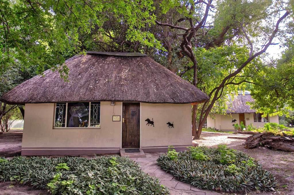 Chalets, Island Safari Lodge