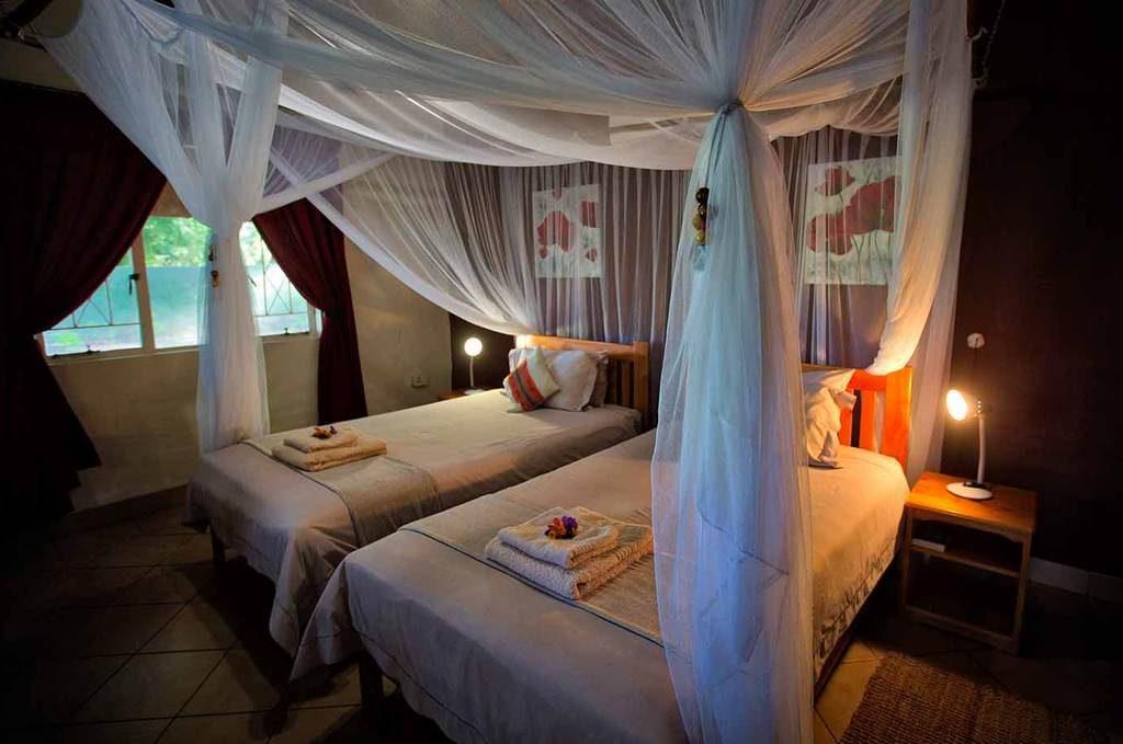 Chalet interior, Island Safari Lodge