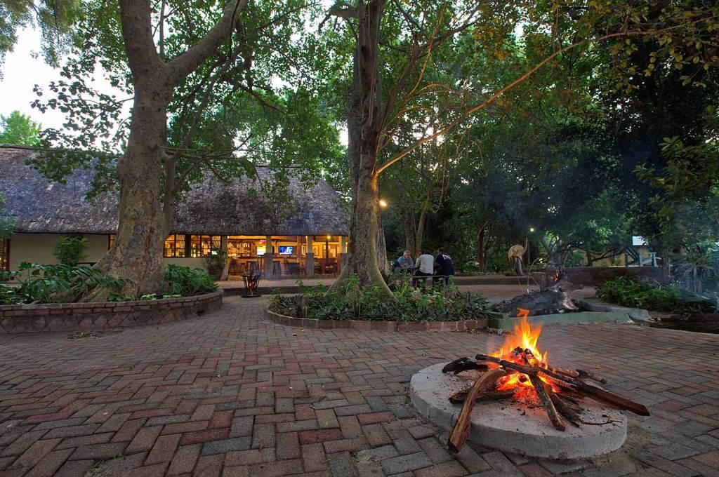 Island Safari Lodge main area