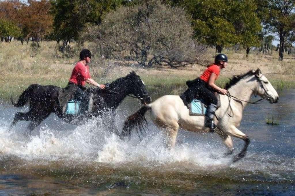 Horse riding at Island Safari Lodge